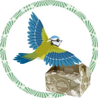 Box Oiseaux du jardin