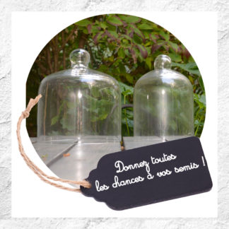 Cloches verre