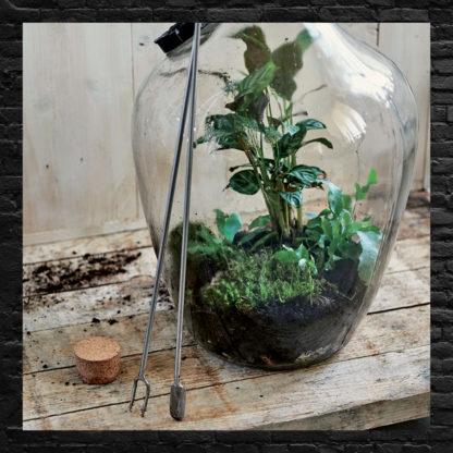 Outils à terrarium