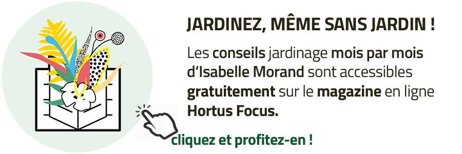 accédez gratuitement aux conseils jardin d'Isabelle Morand