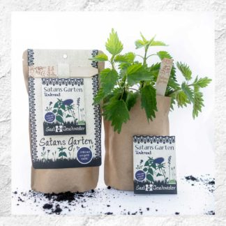 Kits à planter : herbes sauvages