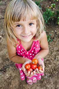 Tomates en pot: fillette avec tomates cerises