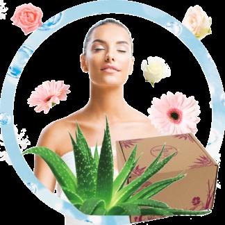 Aloe vera : la box Fraîcheur